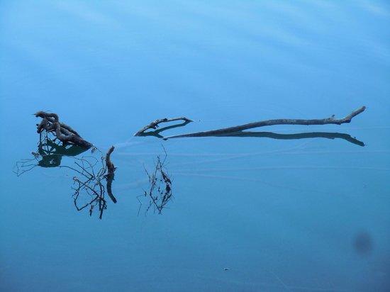 Acetaia del Balsamico Trentino Bed & Breakfast : Relax nel lago di tenno