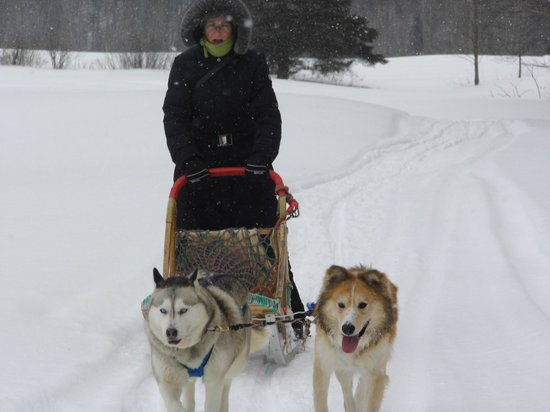 Escapade Laurentides Canin: Another guest from Europe