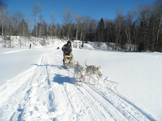 Escapade Laurentides Canin: Here you can drive a sled at any age!!!