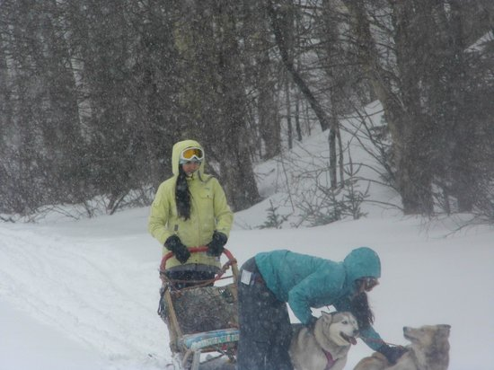 Escapade Laurentides Canin: Teens loves to drive with there friends