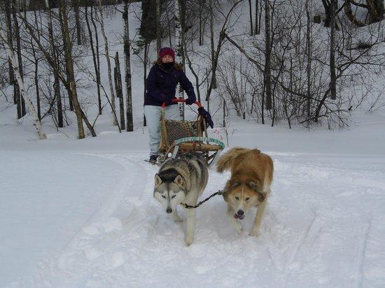 Escapade Laurentides Canin: March break fun