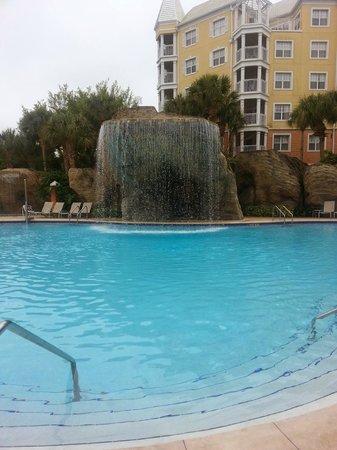 Hilton Grand Vacations at SeaWorld: Main Pool Area