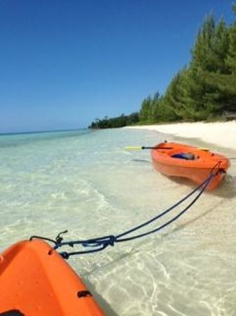 Chad4Nature Tours - Private Tours : Beach