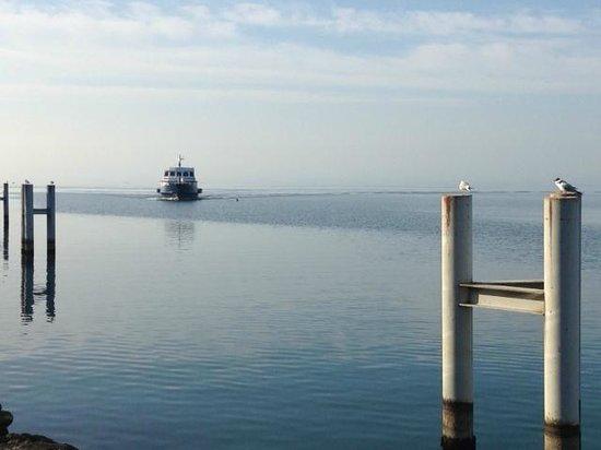 Lac Leman : Le bateau arrive de Lausanne
