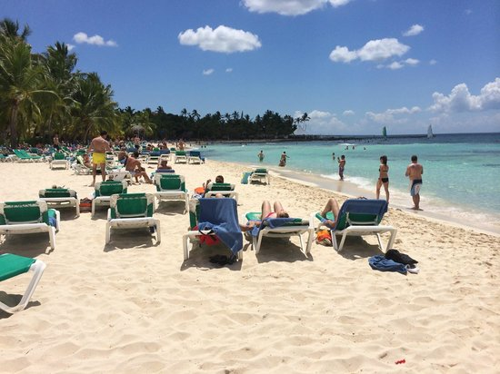 Viva Wyndham Dominicus Beach: spiaggia Viva