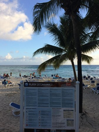 Viva Wyndham Dominicus Beach: spiaggia vista dalla bar centrale