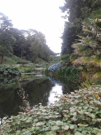 Trebah Garden : lovely view of the lower pond