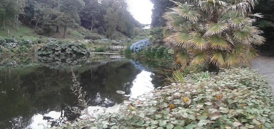 Trebah Garden : view of the lower pond