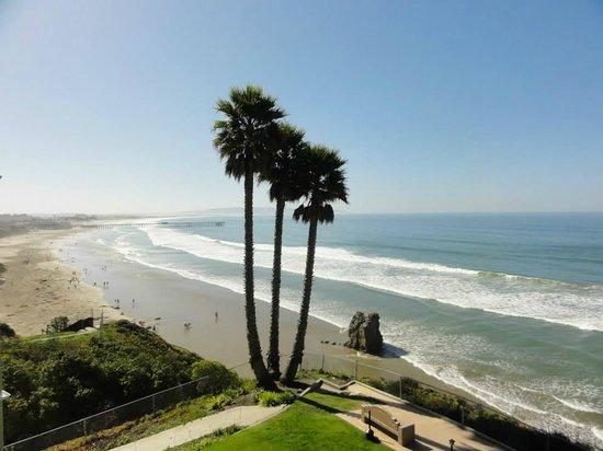 SeaCrest OceanFront Hotel: a little farther up