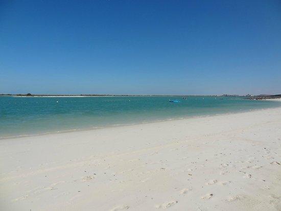 Crowne Plaza Abu Dhabi - Yas Island: Beach