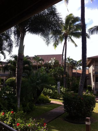 Sunny Maui Vacations : Towards the pool/hot tub/patio and BBQ's :)