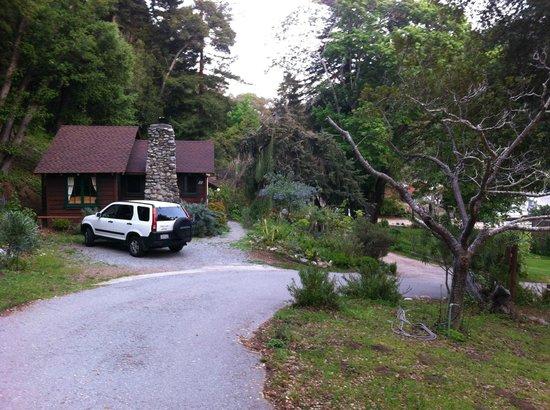 Ripplewood Resort: Вид из дома на другие домики