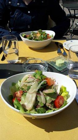 Vorspeise: gemischter Blattsalat