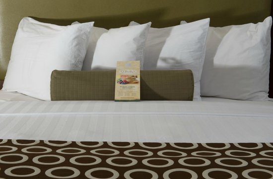Best Western Premier The Central Hotel & Conference Center : O'Reilly's Room Service