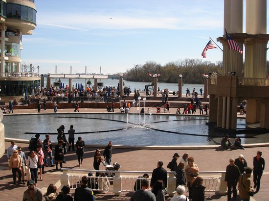 DC Insider Tours: Walking into the Waterfront