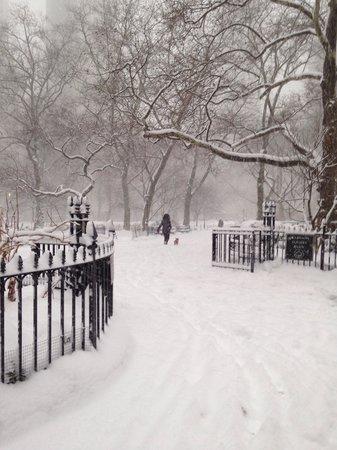Madison Square Park -Winter