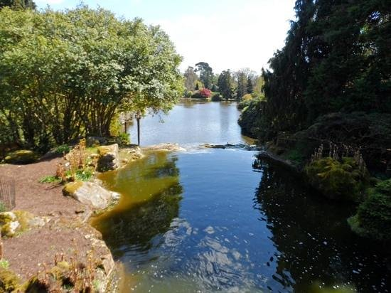 Sheffield Park and Garden: Lakeside views