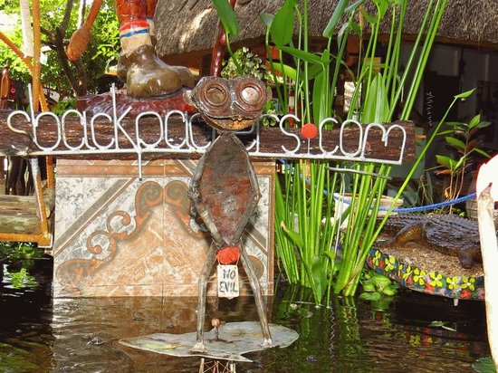 Victoria Falls Backpackers: Doofus' Monkey - Very Pretty Decorations