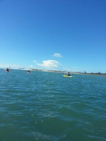 Whangarei, Nueva Zelanda: kayaking up the river