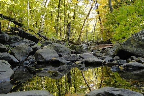 Devil's Lake State Park: Northeast side trail - Autumn