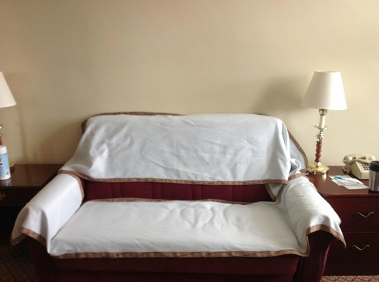 Boston Hotel Buckminster : very tired and worn sofa-put bed blankets over it so one could sit-pull out couch-would not slee