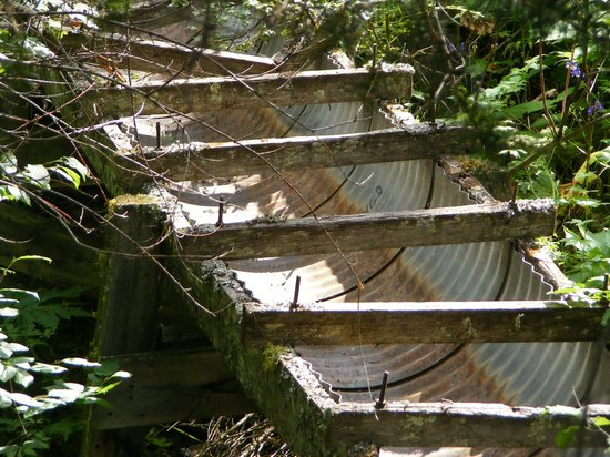 Myra Canyon Park: remnants of old water systems