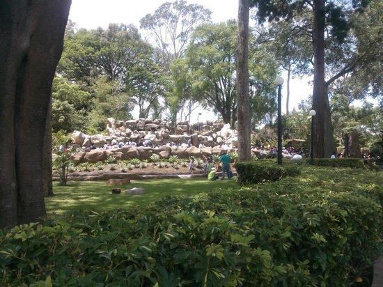 Zoológico Nacional La Aurora: 825