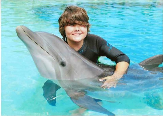Marine Habitat at Atlantis: Interacting with a Dolphin at Atlantis, Nassau