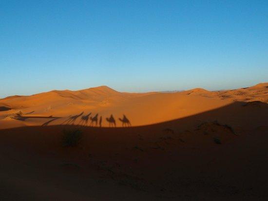 Moroccan Desert Trips : desert
