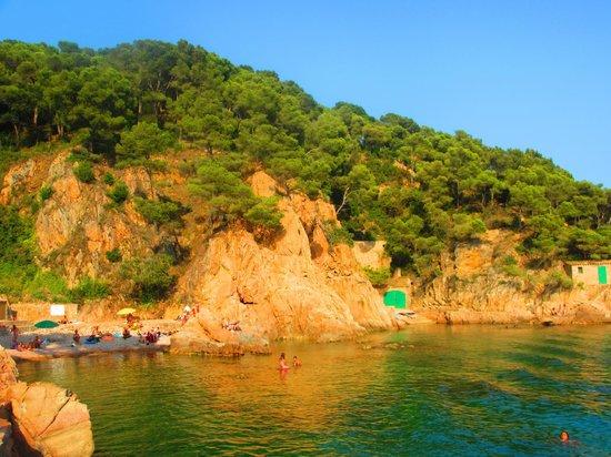 Camping La Siesta: Palafrugell beach