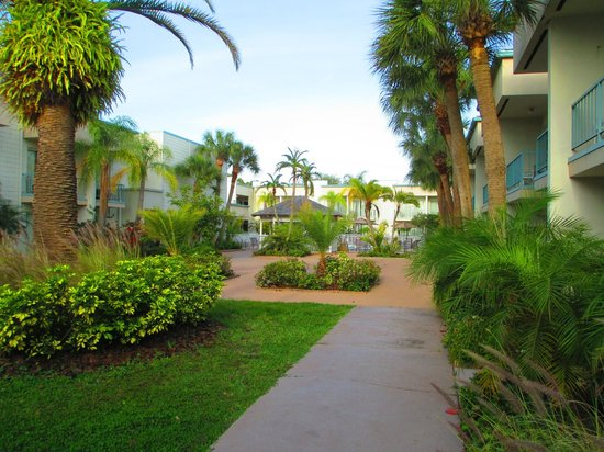 La Quinta Inn Tampa Bay Pinellas Park Clearwater: rooms surround this area so beautiful !