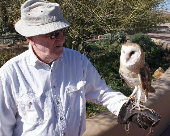 Arizona-Sonora Desert Museum : Docent with barn owl
