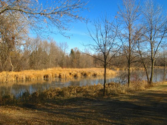 French Regional Park: View from a fall hiking trail