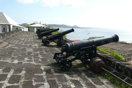 Canons Fort George
