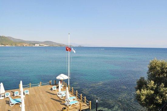 Paloma Pasha Resort : La plage et son ponton