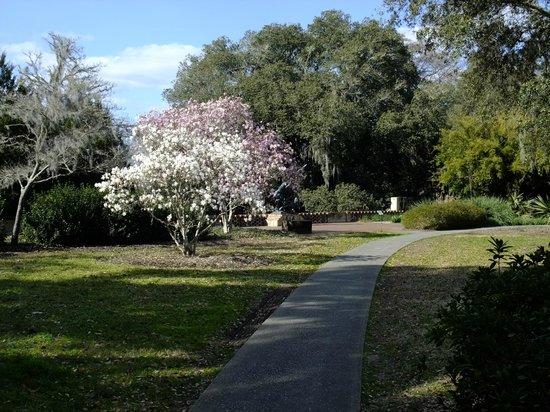 Spring blossoms picture of brookgreen gardens murrells inlet tripadvisor for Brookgreen gardens south carolina