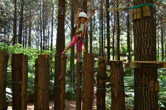 Adventure Forest : stretch