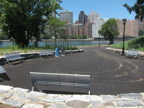 Manhattan Skyline : Roosevelt Island Day