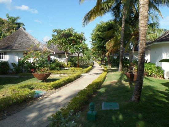 Royal Decameron Club Caribbean : Gardens behind our room