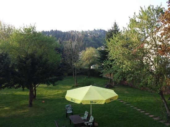 St. Thomas am Brunnenhof: Blick in den Garten