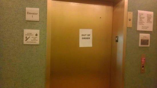 Hilton Garden Inn South Padre Island : elevator
