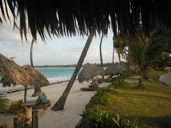 VIK hotel Cayena Beach: Private beach