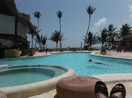 VIK hotel Cayena Beach: a pic from the swim-up bar