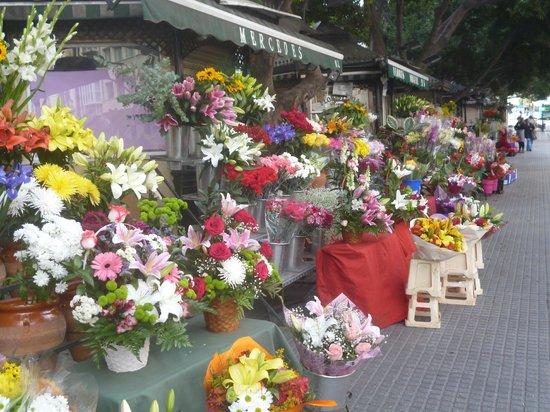 Alcazaba: Flower stalls