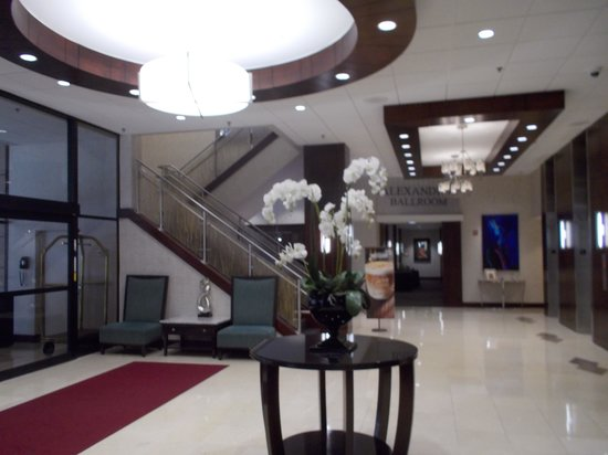 Crowne Plaza Washington National Airport: Lobby