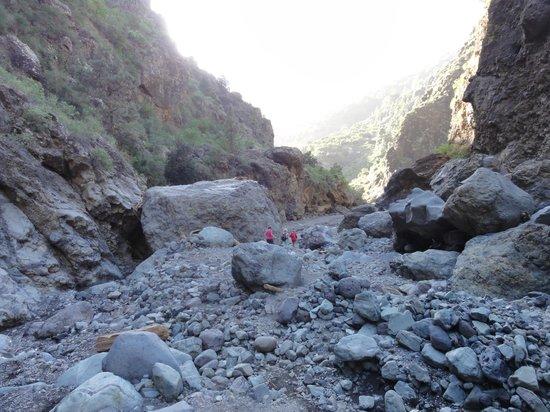 Caldera de Taburiente National Park: Bachbett