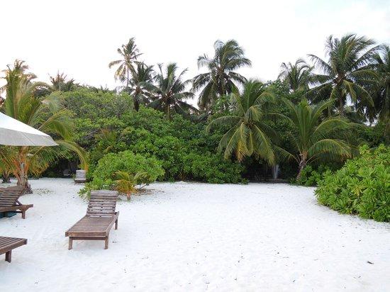 Holiday Island Resort & Spa : spiaggia