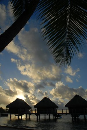 Manava Beach Resort & Spa - Moorea : sunset from beach