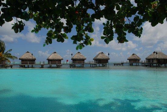 Manava Beach Resort & Spa - Moorea : pool facing sea