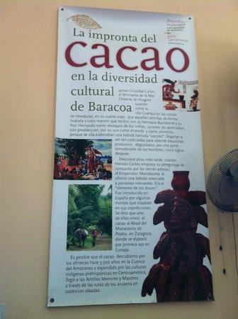 Casa del Chocolate: Casa del Cacao